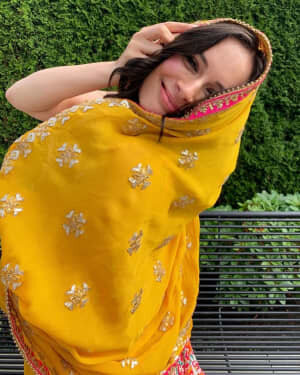 Evelyn Sharma Latest Photos | Picture 1740357