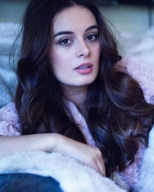 Evelyn Sharma Latest Photos | Picture 1740341