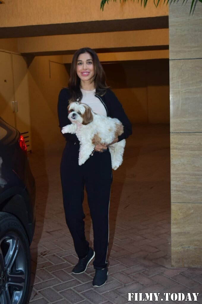 Sophie Choudry - Photos: Celebs Spotted At Bandra   Picture 1771296
