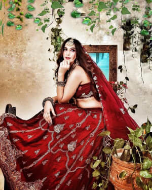 Harshitha Panwar Latest Photos | Picture 1772956