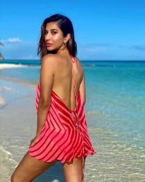 Sophie Choudry Latest Photos | Picture 1773315