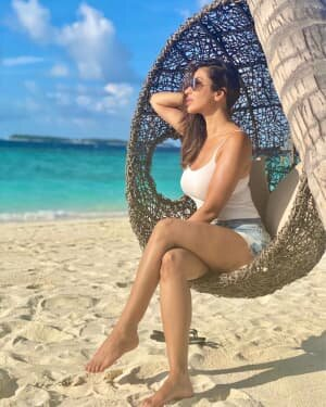 Sophie Choudry Latest Photos | Picture 1773323