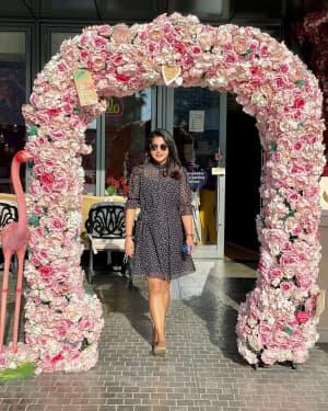 Meera Nandan Latest Photos | Picture 1777447