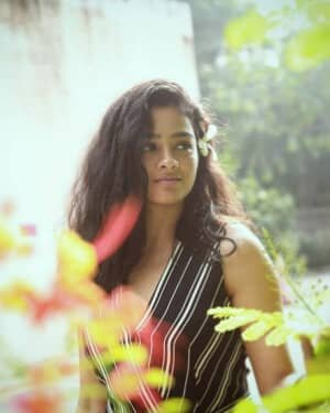 Gayathrie Shankar Latest Photos | Picture 1768241