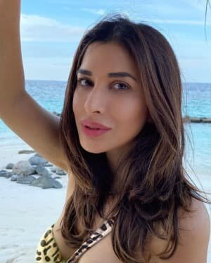 Sophie Choudry Latest Photos | Picture 1808642
