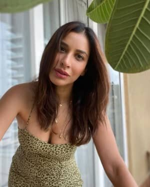Sophie Choudry Latest Photos | Picture 1808638
