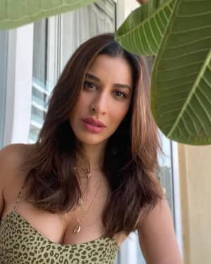 Sophie Choudry Latest Photos | Picture 1808640