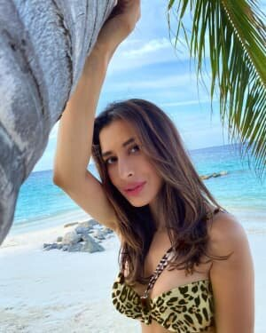 Sophie Choudry Latest Photos | Picture 1808641