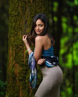 Tridha Choudhury New Photos | Picture 1796099