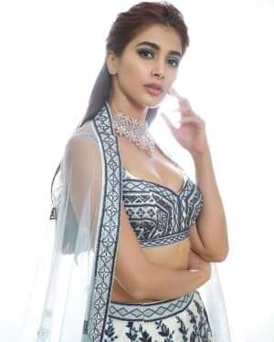 Pooja Hegde Latest Photos   Picture 1797866