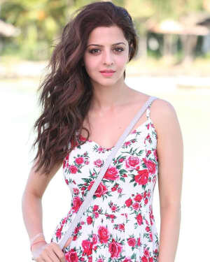Vedhika Latest Photos   Picture 1740528