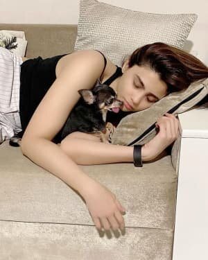 Daisy Shah Latest Photos | Picture 1755193