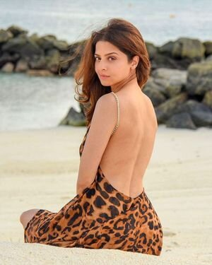 Vedhika Latest Photos | Picture 1819258