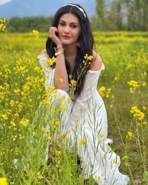 Amyra Dastur Latest Photos | Picture 1809019