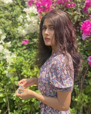 Shalini Pandey Latest Photos | Picture 1816206