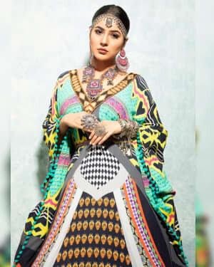 Shehnaaz Kaur Gill Latest Photos | Picture 1747152