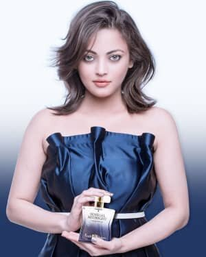 Sneha Ullal Latest Photos | Picture 1743924