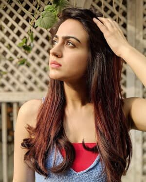 Aksha Pardasany Latest Photos | Picture 1738519