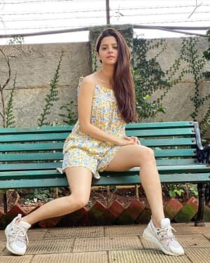 Vedhika Latest Photos | Picture 1750325