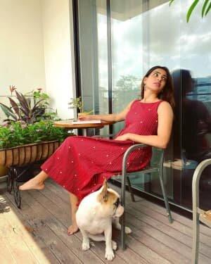 Samantha Akkineni Latest Photos | Picture 1748454