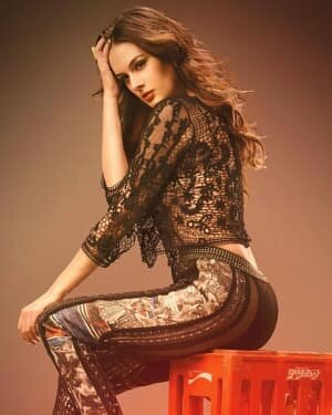 Evelyn Sharma Latest Photos | Picture 1765794