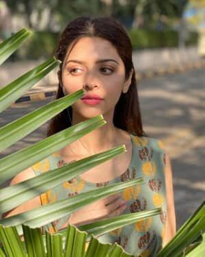 Vedhika Latest Photos | Picture 1765690